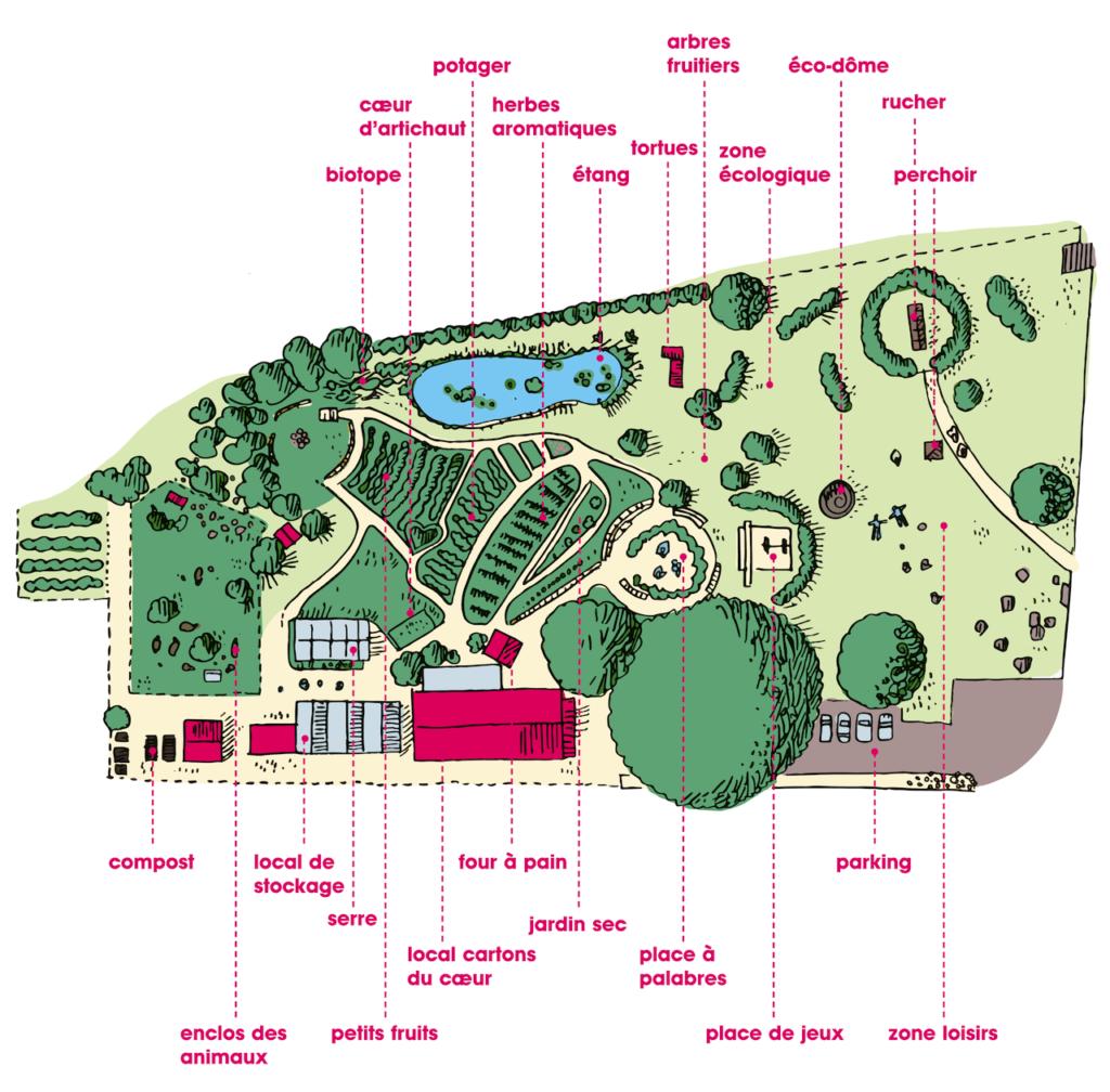 Jardin Potager Collectif Yverdon Les Bains Coeur Artichaut Illustration Plan Du Jardin